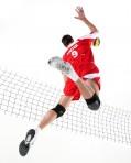 Inscription volley